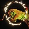 Цирки в Каменске-Уральском